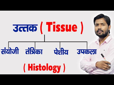 Types of Human Tissue | Tissue Functions | Histology in Hindi