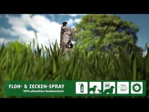 Gardigo Haustier Floh- und Zeckenspray - natürlicher Flohschutz und Zeckenschutz für Katze und Hund