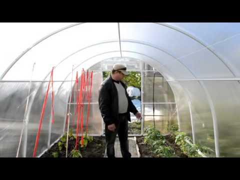 Технология укладки тропинки в теплице