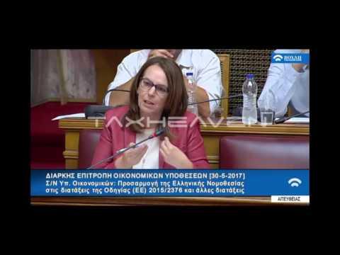 Α. Παπανάτσιου για παράταση αδήλωτων εισοδημάτων (30-05-17)