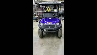 7. Bighorn Gas Golf Cart