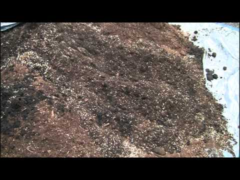 How to Make Square Foot Gardening Soil Mix – in Real Time
