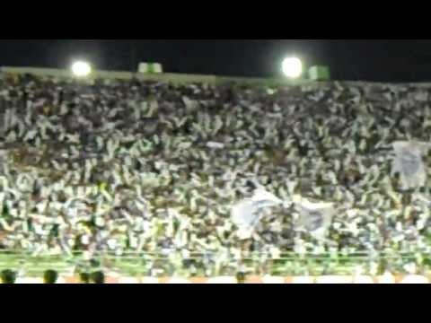 Bahia Minha Vida Torcida de Ouro (Salvador - Bahia -Brazil) - Movimento Avante Esquadrão - Bahia