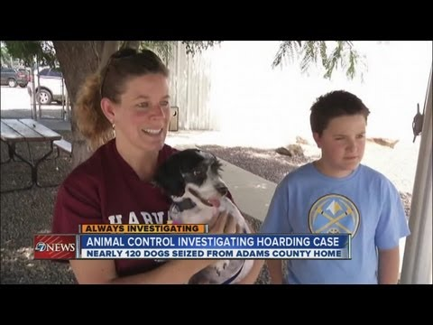 Families adopt rescued Havanese dogs