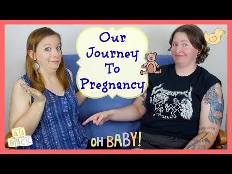 Video Our Journey to Pregnancy ⎮ ASL Stew download in MP3, 3GP, MP4, WEBM, AVI, FLV January 2017