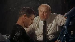 Video The TRUTH - Great scene from Cat On A Hot Tin Roof MP3, 3GP, MP4, WEBM, AVI, FLV November 2018