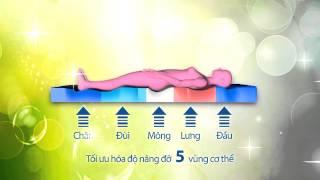 Chăn drap gối nệm Thế Linh ( Quảng cáo 30s )