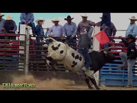 Video Navajo Bull Riding Jim Boys download in MP3, 3GP, MP4, WEBM, AVI, FLV January 2017