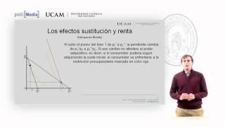 Microeconomía I - La Teoría De La Demanda (4) - Alfonso Rosa García