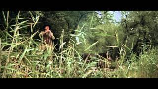Video The Bear (1988) - Chú Gấu MP3, 3GP, MP4, WEBM, AVI, FLV Juli 2018