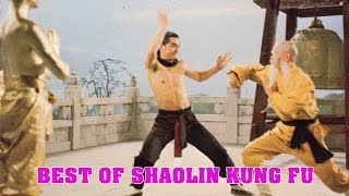 Nonton Wu Tang Collection   Best Of Shaolin Kung Fu Film Subtitle Indonesia Streaming Movie Download