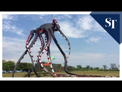 Giant octopus kite flying at Marina Barrage