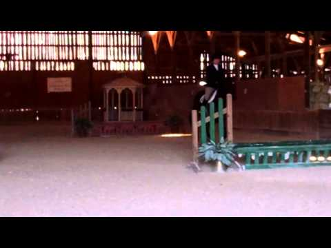 Kaduk Sherpa's Win in Novice Fences - 3/9/14