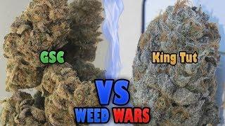 WEED WARS: GSC vs King Tut by Urban Grower