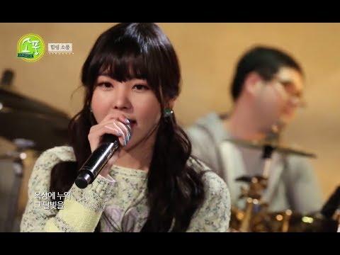 Healing 'Picnic Live', 피크닉 라이브 소풍 - 힐링 소풍 #02, 37회, 20140515 (видео)