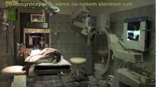 Operace zlomeniny přední nohy loveckého psa