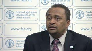 FAO Response Plan 2016 for El Niño in Ethiopia