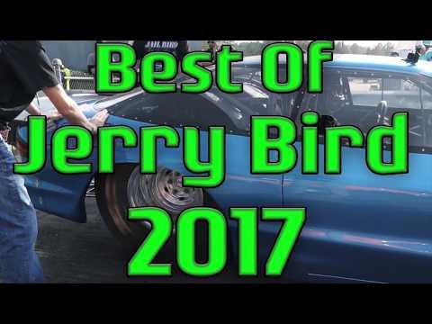 Best of Jerry Bird in 2017 (4k)