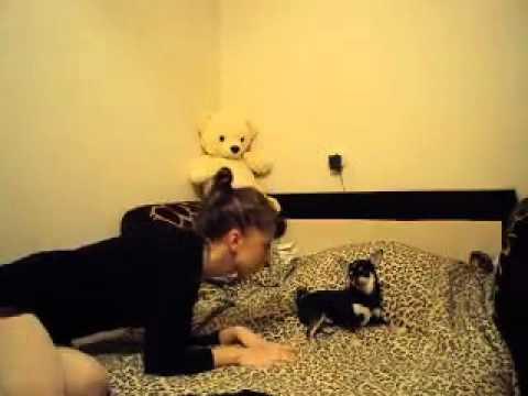 Смотреть онлайн бесплатно в качестве девушка с собакой(Ксения Вишневская) F