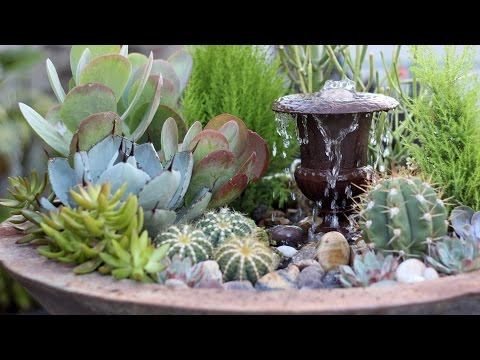 Succulent Fountain Arrangement - Triple Urn Challenge November