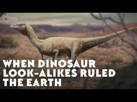 When Dinosaur Look-Alikes Ruled the Earth