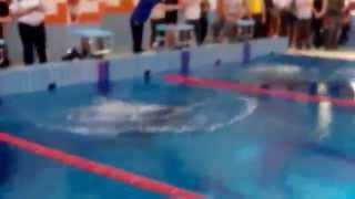 Соревнования по прикладному плаванию 2014 (видео №4)