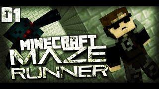 Minecraft MAZE RUNNER -