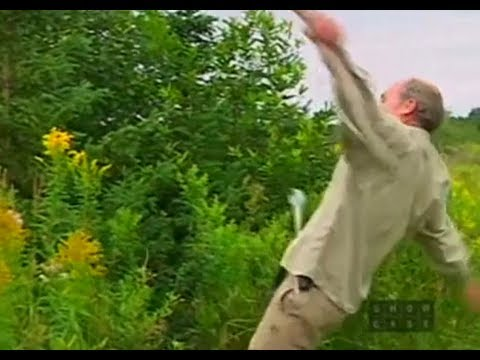 The Fall(s) of Jim Lahey [Part 1]