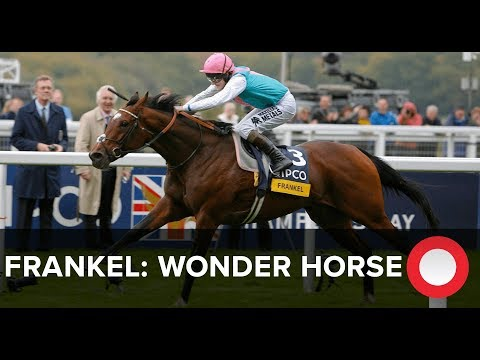 frankel - Alastair Down presents the story of Frankel, featuring contributions from Teddy Grimthorpe, Tom Queally and Brough Scott. Pre-order your copy of Frankel: The...