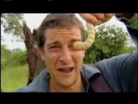 bear grylls - Check out Bear's Ten SCARY SURVIVAL moments: http://go.discovery.com/?mkcpgn=ytdsc1&url=http://dsc.discovery.com/videos/man-vs-wild-scary-survival-moments/?s...