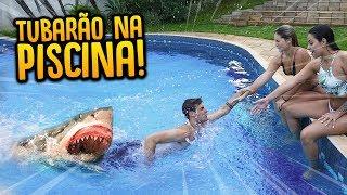 Video PEGA-PEGA TUBARÃO NA PISCINA!! ( VALENDO R$500 ) [ REZENDE EVIL ] MP3, 3GP, MP4, WEBM, AVI, FLV Juni 2018