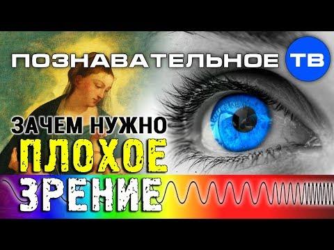 Зачем нужно плохое зрение (Познавательное ТВ Артём Войтенков) - DomaVideo.Ru