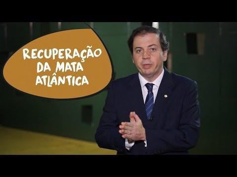 Rodrigo de Castro: recuperação da Mata Atlântica