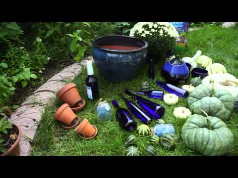 Fall Gardening Challenge: A Waterfall of Blue