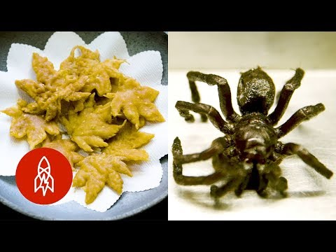 You Deep Fried WHAT? Weird Fried Foods and More