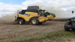Feves France  city pictures gallery : New Holland CR9070 moisson des fèves