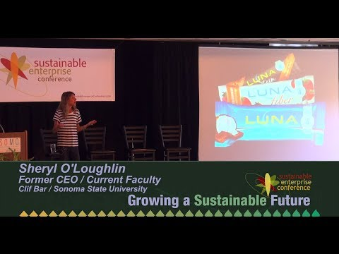 Sheryl O'Loughlin - Reaching for Sustainability - SEC 2014