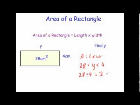 area of parallelogram essay This post contains a great explanation of how to find the area and perimeter of a triangle the area is found by taking half of the product of the base and.