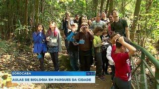 Sorocaba: projeto leva crianças a parques para aprenderem sobre os pássaros e a natureza