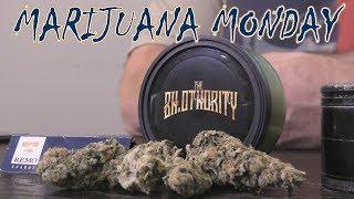 Guava Gelato Marijuana Monday by Urban Grower