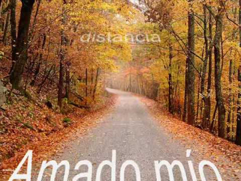 video contigo en la distancia 2007