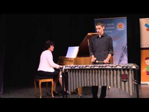 Adj teret a tehetségnek! 2014 - Mizsák Benjámin (xilofon és vibrafon) produkciója