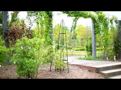 Fioriera per piante rampicanti in giardino fai da te