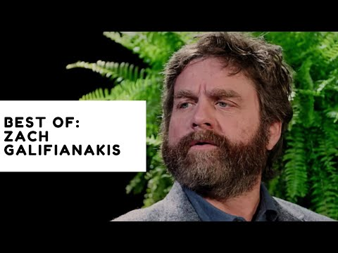 Zach Galifianakis' Funniest Moments Compilation between two ferns