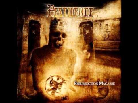 Tekst piosenki Pestilence - Horror Detox po polsku