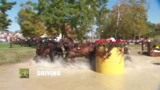 Promotional Clip Alltech FEI World Equestrian Games 2014 in Normandy