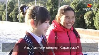 Бишкектин тургундары эмнени ойлошот?