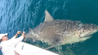 Bull shark fishing off the east coast of Florida livestream with Capt Ben Chancey.Be sure to check outhttp://www.youtube.com/realsaltlifefor more great videos.▬▬▬▬▬▬▬ About Chew On This ▬▬▬▬▬▬▬Chew On This provides the viewer a first hand look at catching mean aggressive high intensity fish fishing videos on the web. Captain Ben Chancey does fishing at its pinnacle and highest level of difficulty. Captain Ben has caught giant fish on just about everything including paddleboards, Kayaks, floats tubes, ultra skiffs, bay boats, flats boats, sportfishers and even gheenoes. Chew On This videos and content have been featured on Discovery, National Geographic, Today Show, Good Morning America, Fox News, ESPN, Fox Sports, The Weather Channel and many more! ► NEW VIDEO EVERY WEDNESDAY► Click Here to Subscribe → http://bit.ly/1tQiHaf► Find out More about boat → http://ultraskiff.com► Website → http://chewonthis.tv• Instagram → http://instagram.com/captchancey• Twitter → http://twitter.com/#!/captchancey• Email → captchancey@gmail.com• Snapchat → chewonthisfish Ben Chancey▬▬▬▬▬▬▬ PROMOTIONS ▬▬▬▬▬▬▬Remote Battery Boosterhttp://www.safetyboost.com#safetyboost.com#chewonthis#saltlifeClick Here to Subscribe! ► http://bit.ly/1tQiHaf▬▬▬▬▬▬▬ BRANDS WE USE ▬▬▬▬▬▬▬• HUMMINBIRD• Salt Life• Minn Kota• Diawa• Safety Boost Remote Battery Booster▬▬▬▬▬▬▬ RELATED VIDEOS ▬▬▬▬▬▬▬Tiny Creek Fishing after a Flood? (Surprise Catch!)https://www.youtube.com/watch?v=eFw250sA1uI&t=9sBest Fishing Lure for Bass and Snakeheads! DOOMSDAY TURTLE LURE?!https://www.youtube.com/watch?v=Yqn-RypJsHY&t=19sCreative Man Make Deep Hole Eel Trap With Water Pipe Catch A Lot Of Eels Near My Villagehttps://www.youtube.com/watch?v=8lBAIRqL4pA