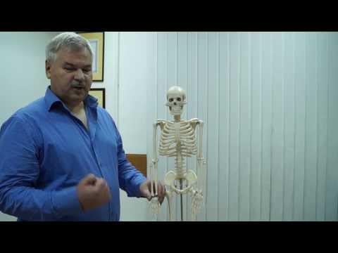 Синдром Запястного Канала (боли в руке, лечение)