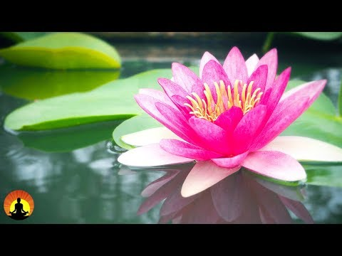 Relaxing Spa Music, Calming Music, Relaxation Music, Meditation Music, Instrumental Music, ✿646C